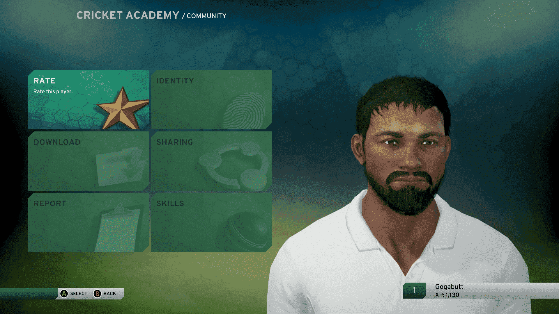 Pakistan Players - Don Bradman Cricket 17 Forum on