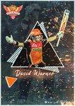 David Warner1.jpg