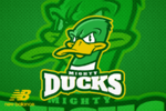 Mighty Ducks banner.png